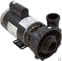 "Executive Pump 5HP 230v 1-Speed 56fr 2"" 3712021-1D"