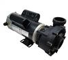 LX Pump 3HP 2-Speed 48WUA2002C-II 48 Fr 2 Inch