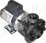 50hz Circ Pump 02920002