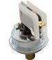 Pressure Switch 1A SPNO 3/16 Inch CF Pressure Switch 3038