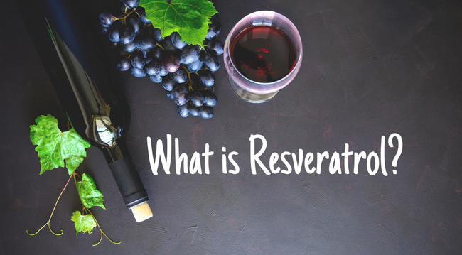 What is Resveratrol- Vera Roasting Company