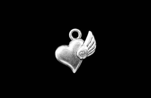 Angel Wing 16