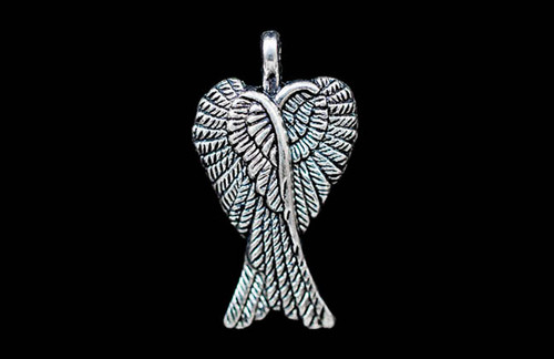 Angel Wing 19