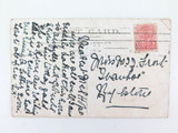 RARE EARLY 1900'S POSTCARD. BARRACLUFF'S OSTRICH FARM, SOUTH HEAD, SYDNEY