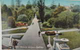 SYDNEY , BOTANICAL GARDENS NEW SOUTH WALES EARLY 1900'S POSTCARD.