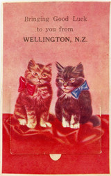 WELLINGTON, NEW ZEALAND VINTAGE FOLDOUT POSTCARD