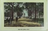 SYDNEY , HYDE PARK 1910 POSTCARD ,  NEW SOUTH WALES