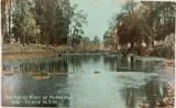 1912 HUNTER RIVER AT ARDEN HALL NEAR SCONE NSW POSTCARD.