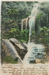 NEW FALLS , WENTWORTH NEW SOUTH WALES EARLY 1900'S POSTCARD
