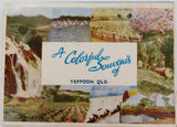 c1940's/50's SOUVENIR OF YEPPOON, QLD FOLD OUT SOUVENIR
