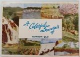 c1940's/50's SOUVENIR OF YEPPOON, QLD FOLD OUT SOUVENIR