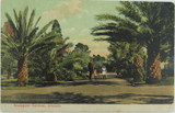 ADELAIDE , ZOOLOGICAL GARDENS SOUTH AUSTRALIA EARLY 1900'S POSTCARD