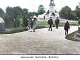 EARLY 1900's COLOUR POSTCARD, BOTANICAL GARDENS, SYDNEY
