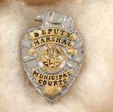 VINTAGE OBSOLETE USA DEPUTY MARSHAL MUNICIPAL COURTS LA ENAMELLED METAL BADGE #9