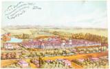 UNUSED GOOD CONDITION 1906 NEW ZEALAND INTERNATIONAL EXPO, CHRISTCHURCH POSTCARD