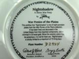 DANBURY MINT, G PERILLO WAR PONIES OF THE PLAINS COLLECTORS PLATE, BOX & COA.