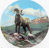 BRADEX KNOWLES LIMITED EDITION COLLECTORS PLATE + OUTER + COA. THE BIGHORN SHEEP