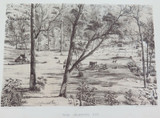 1879 HISTORY of AUSTRALASIA LITHOGRAPH. FREE SELECTOR'S HUT.
