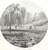 """1886 WOOD ENGRAVING """"BRISBANE BOTANICAL GARDENS"""