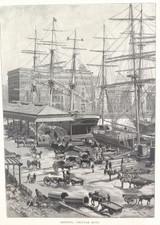 "1886 WOOD ENGRAVING ""SHIPPING, CIRCULAR QUAY"""