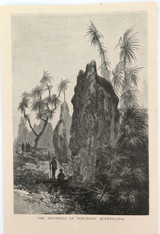 """c1886 ANTIQUE ENGRAVING BOOKPLATE, """"ANT HILLS NORTHERN QUEENSLAND"""" by FULLWOOD."""