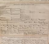 SUPER RARE 1816 LONG GENEALOGICAL CHART / KINGS OF ENGLAND 800AD - 1816AD