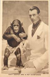 GARY COOPER & A PET CHIMPANZEE LOBBY CARD / CARD