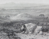 """c1873 ORIGINAL STEEL ENGRAVING """"VIEW NEAR BOTANY BAY"""" FROM S PROUT SKETCH."""