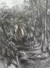 "c1873 ORIGINAL STEEL ENGRAVING ""A FERN TREE VALLEY""."