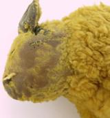 AMERICAN 1800s / EARLY 1900s STUFFED ANIMAL BISON?. STRAW ? LEATHER FEET & EARS.