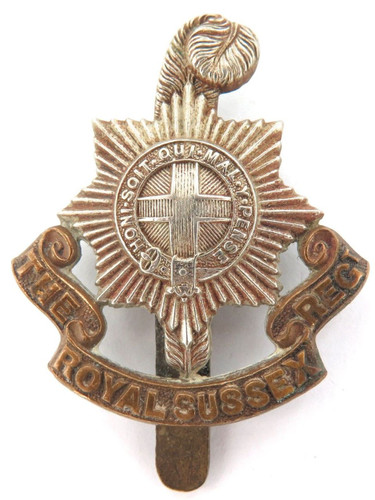 VINTAGE BRITISH MILITARY BI-METAL THE ROYAL SUSSEX REGT BADGE WITH SLIDER.