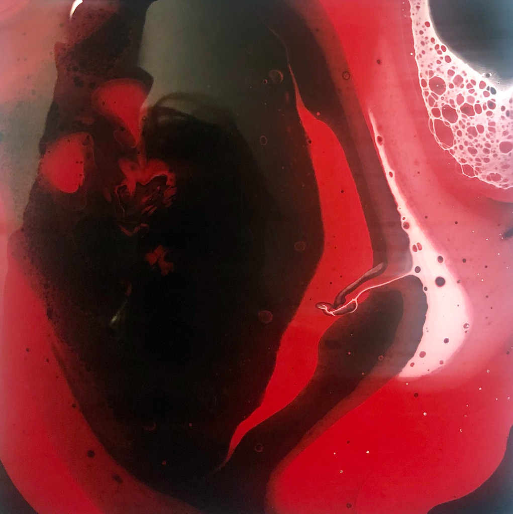 Intro. to Fluid Acrylic - Schedule Your Own Solo or Group Private Workshop!