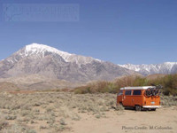 Photo of Inyo National Forest