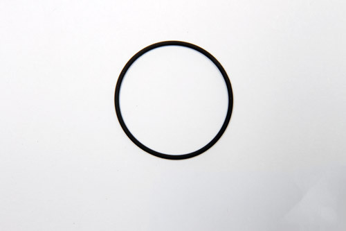 4904-0006 O-Ring 2-030 Viton for Condensate Carry Over Sensor Filters (CCSF)