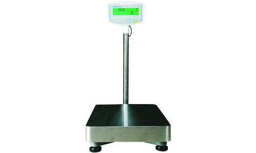 GFC 165a Counting Floor Scale