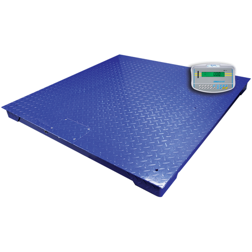 PT 310-10S [AE402] Stainless Steel Floor Scale System with AE402 Indicator