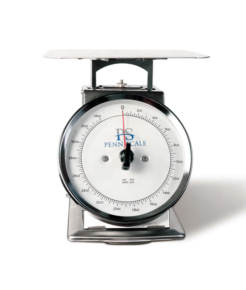 P-10R Spring Scale SS Body-Dashpot Technology