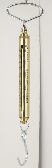 IN-060 Brass IN Series Linear Fish & Game Scales