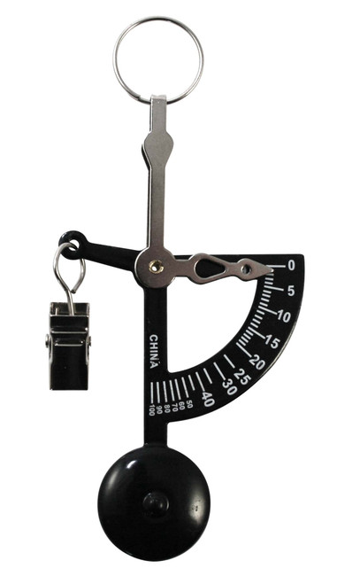 MANUAL LETTER, POSTAGE, OR KITCHEN SCALE, 100G X 1G (AMWHAND)