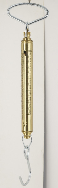 IN-010 Brass IN Series Linear Fish & Game Scales