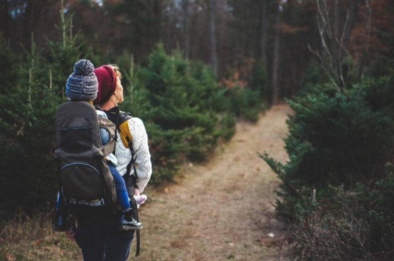Hiking with Kids: The Ultimate Guide for Family Adventure