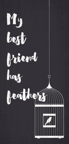 """Pet Sign Wood My Best Friend Has Feathers 5""""x10"""""""