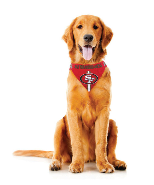 Tampa Bay Buccaneers Pet Bandanna Size S - Special Order