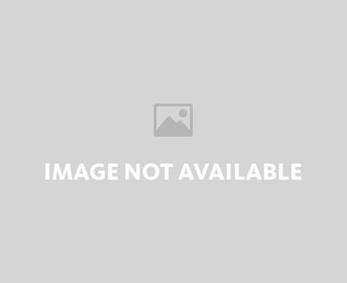 Carolina Panthers Ornament Blown Glass Football Player