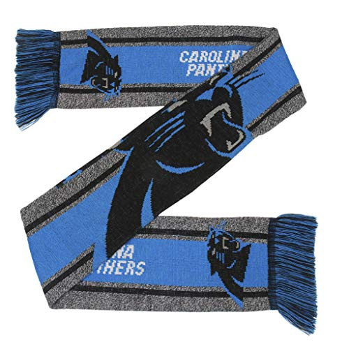 Carolina Panthers Scarf Big Logo Wordmark Gray