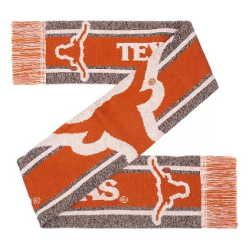 Texas Longhorns Scarf Big Logo Wordmark Gray