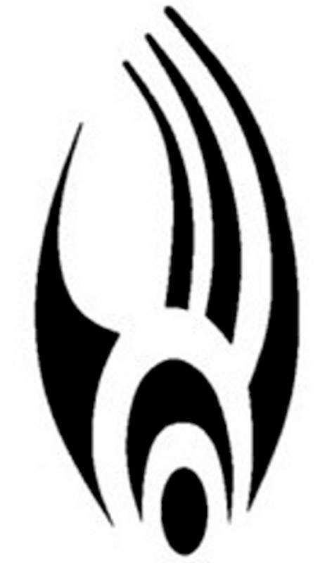 Star Trek Borg Emblem Decal