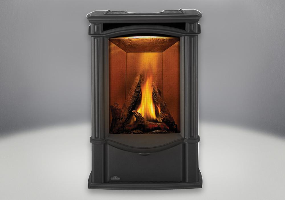 Napoleon Castlemore Black Gas Stove-GDS26N