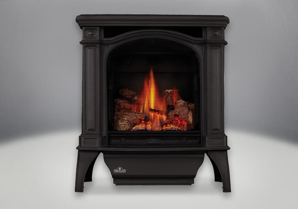 Napoleon Bayfield Black Gas Stove-GDS25N