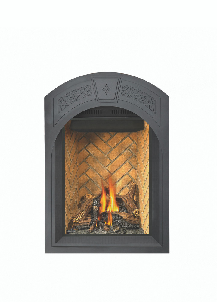 Napoleon Park Avenue Gas Fireplace